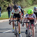 Chantilly Crit 2014 Flickr-29