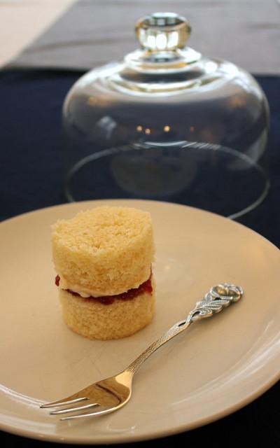 Vanilla Sponge Tasting Sample