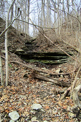 Stream Exposes Limestone and Shale in the Whitewater Gorge