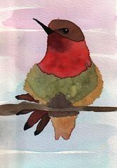 art, drawing, illustration, watercolor paint, bird,