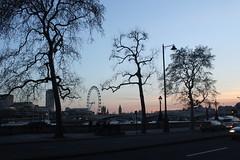 London Eye against Setting skies