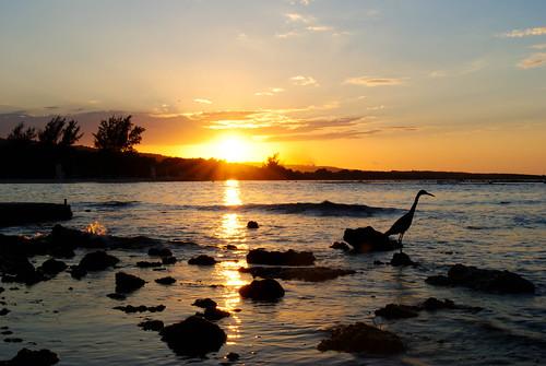 sunset jamaica