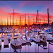 Marina del Rey, California by szeke