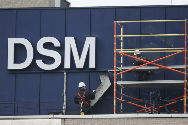 Removing the old DSM Logo Removing the old DSM Logo from