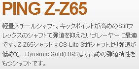 PING Z-Z65
