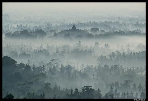 Borobodur in the mist