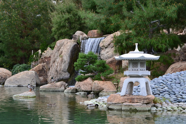 7 Elements that Make Japanese Gardens a Photographer\'s Paradise