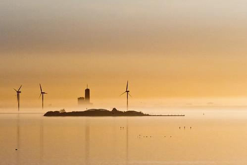 mist netherlands silhouette nederland flevoland sunsetsunrise noordholland almere pampus ijmeer
