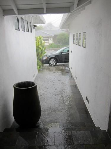 rain, downpour, coco cannon, coco canon IMG_5379