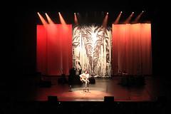 Show Pelotas/Pelotas concert