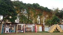 Habitação com espaço verde e área de lazer. #vilasantaluziatorre #barraco #beirario #riocapibaribe #mangue #parque #comunidade #favela #palafita