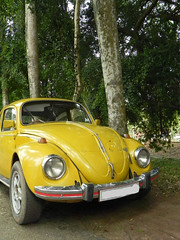 automobile, volkswagen beetle, automotive exterior, vehicle, automotive design, volkswagen type 14a, antique car, vintage car, land vehicle,