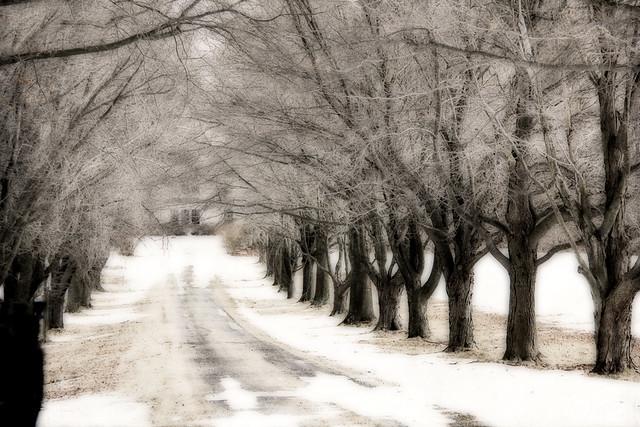 winter visit
