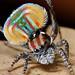 _MG_4150 peacock spider Maratus volans by Jurgen Otto