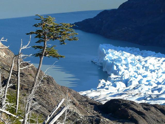 Lago et glaciar Grey