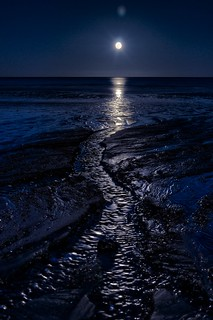 Perigee Moon Low Tide