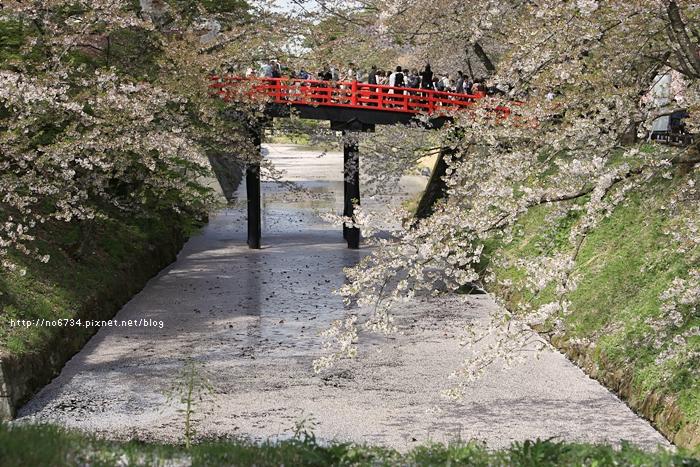 20140502_AomoriSakura_1868 ff