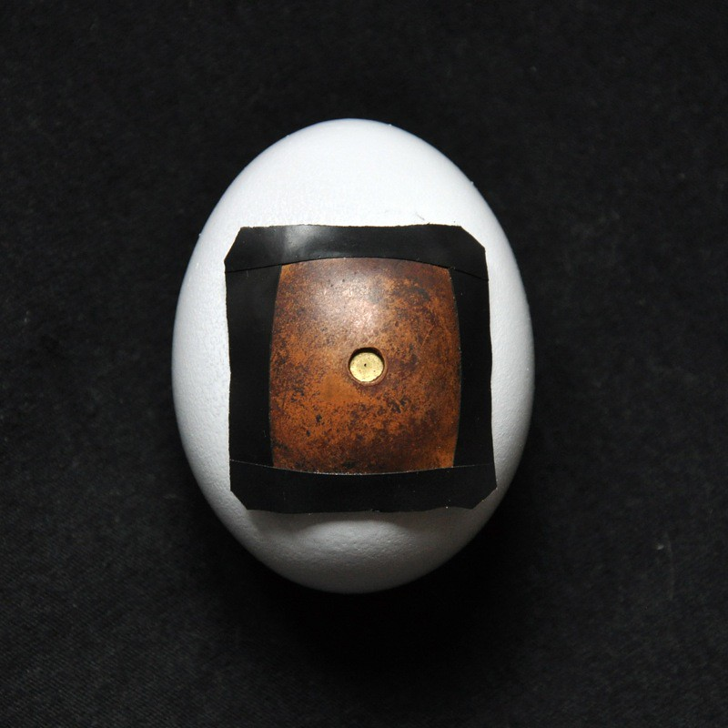 egg pinhole camera