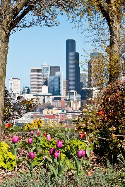 Seattle in Spring