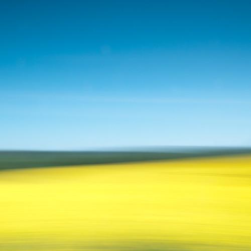 golden fields icm