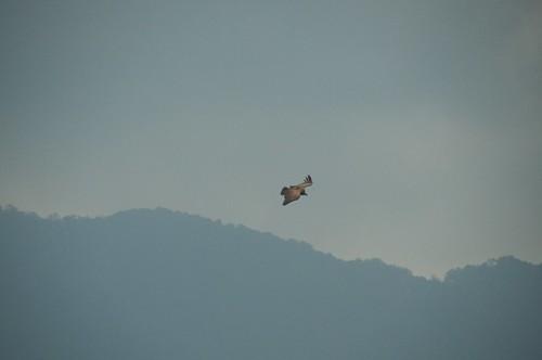 nepal 192