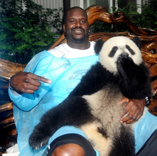 10 Pictures of Shaquille O'Neal Being Awesome