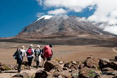 Climbing Mt. Kilimanjaro - Tanzania