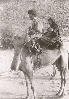 famille à dos de chameaux