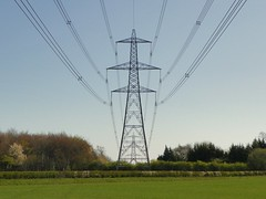 GOC Wild Beds and Edgy Herts 005: Pylon within a pylon