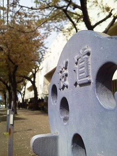 Kuva 桜道. picplz