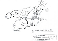 The Permaculture Cup of Tea - Closed System