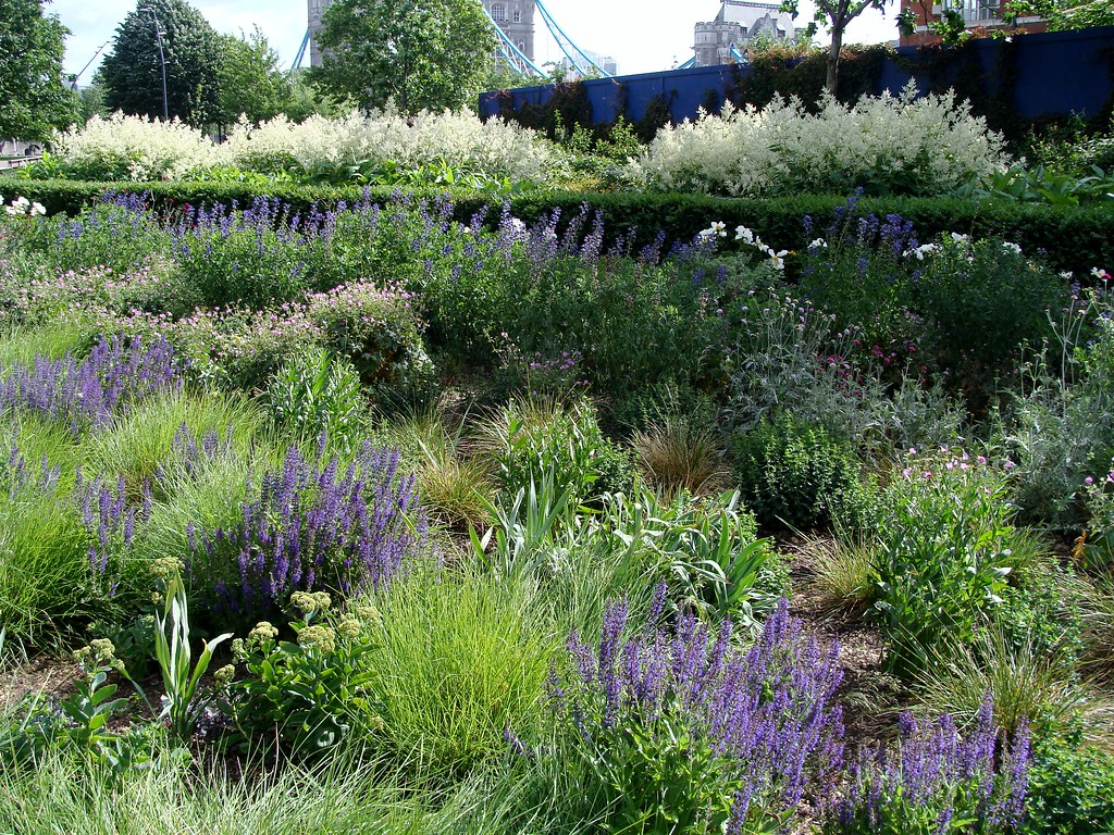 Piet Oudolf Planting Potters Fields London A Photo On