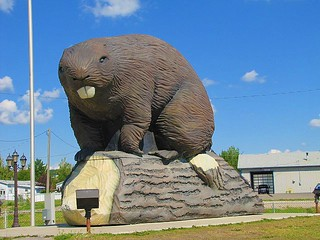 World's biggest beaver