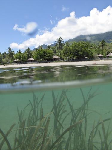 environment atauroisland ecolodge timorleste