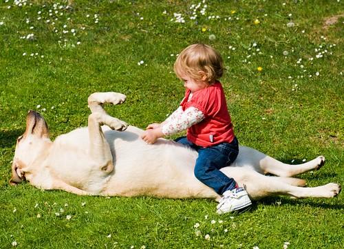 Einem Menschen, den Kinder und Hunde nicht leiden können, ist nicht zu trauen.  by GT 1967 (never busy but a lazy guy)