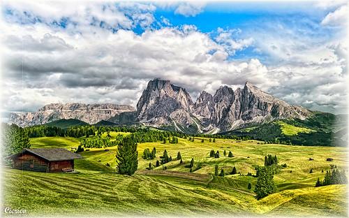 Alpe di Siusi (Seiser Alm) - 1.850 m s.l.m. by cicrico