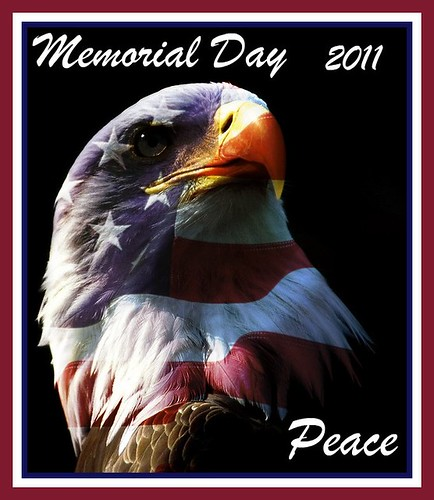 Thank You to my Friends who serve in the Indiana National Guard...Happy Memorial Day Flickr & Facebook  Friends