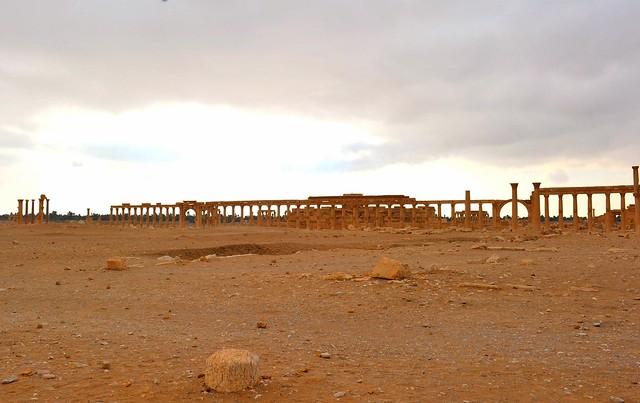343 Palmyra (Syria)