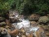 bush stream02