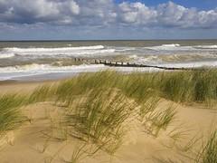 wetland, horizon, beach, sand, sea, ocean, wind, body of water, natural environment, mudflat, wave, shore, coast,