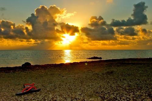 marina sunrise miami southflorida blackpointmarina cutlerbay