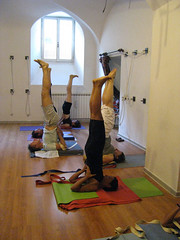 vinyasa flow and standing poses foreign language