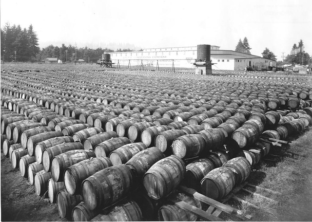 Barrels of pickles, circa 1945
