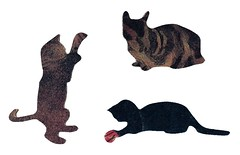 pet, black cat, cartoon, illustration,