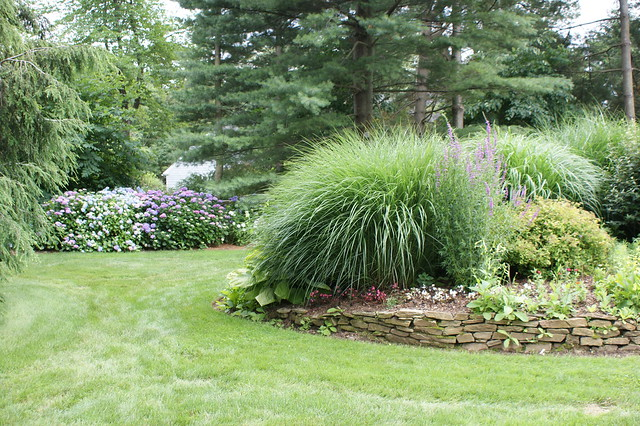 Photo for Ornamental grass bed