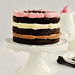 Inside-Out Neapolitan Layer Cake 2