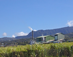 Guadeloupe (Distillerie Bologne à Basse-Terre).