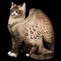 Ребята, обнаружившие крылатую кошку, искренне удивлялись находке и не...