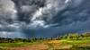 Tornado Warning  278/365