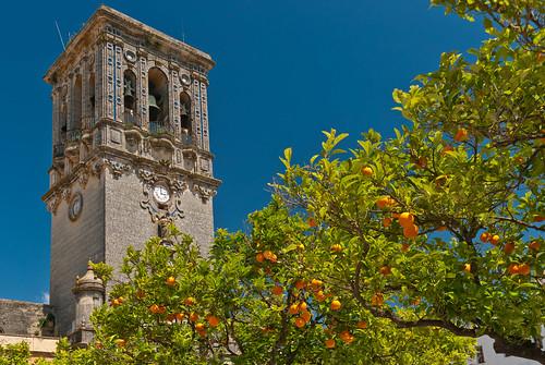 Oranges bénites / Blessed oranges